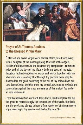 Mega Cards/BookMarks- St Thomas Aquinas' Prayer to BVM