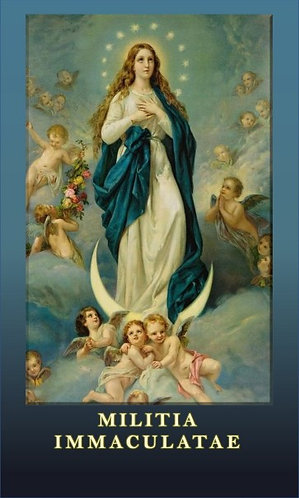 MI Prayer Card in  Italian - O Mary conceived without sin