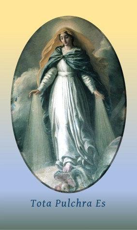 PRAYER CARD -Tota Pulchra Es