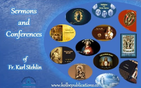 3 to 4 Customised Video Selections of Fr. Stehlin's  sermons/conferences