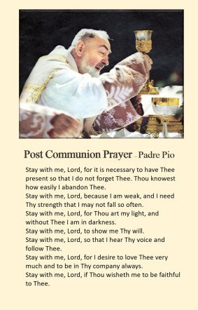 Mega Cards/BookMarks - Padre Pio 's post communion( Stay with me)