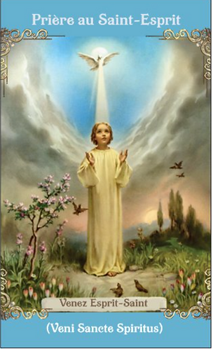 PRAYER CARD  -Come Holy Ghost  in French