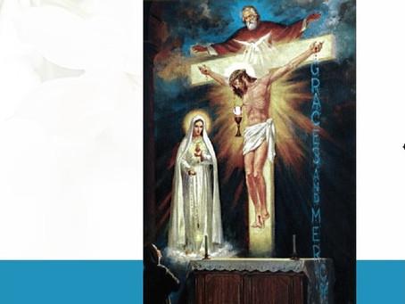 Fatima- A  spiritual light for our times Vol 2