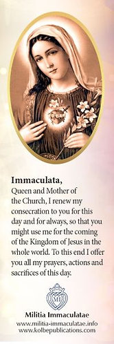 Book mark- Immaculate Heart