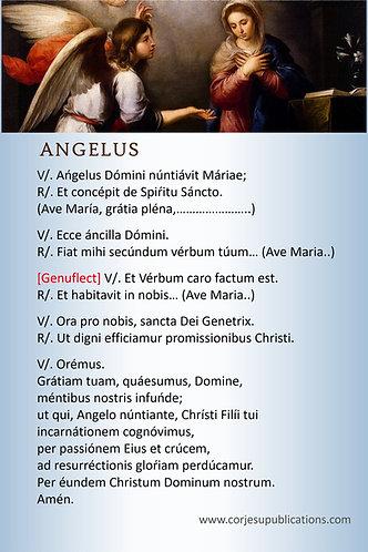 Mega Cards/BookMarks- ANGELUS  in Latin  English