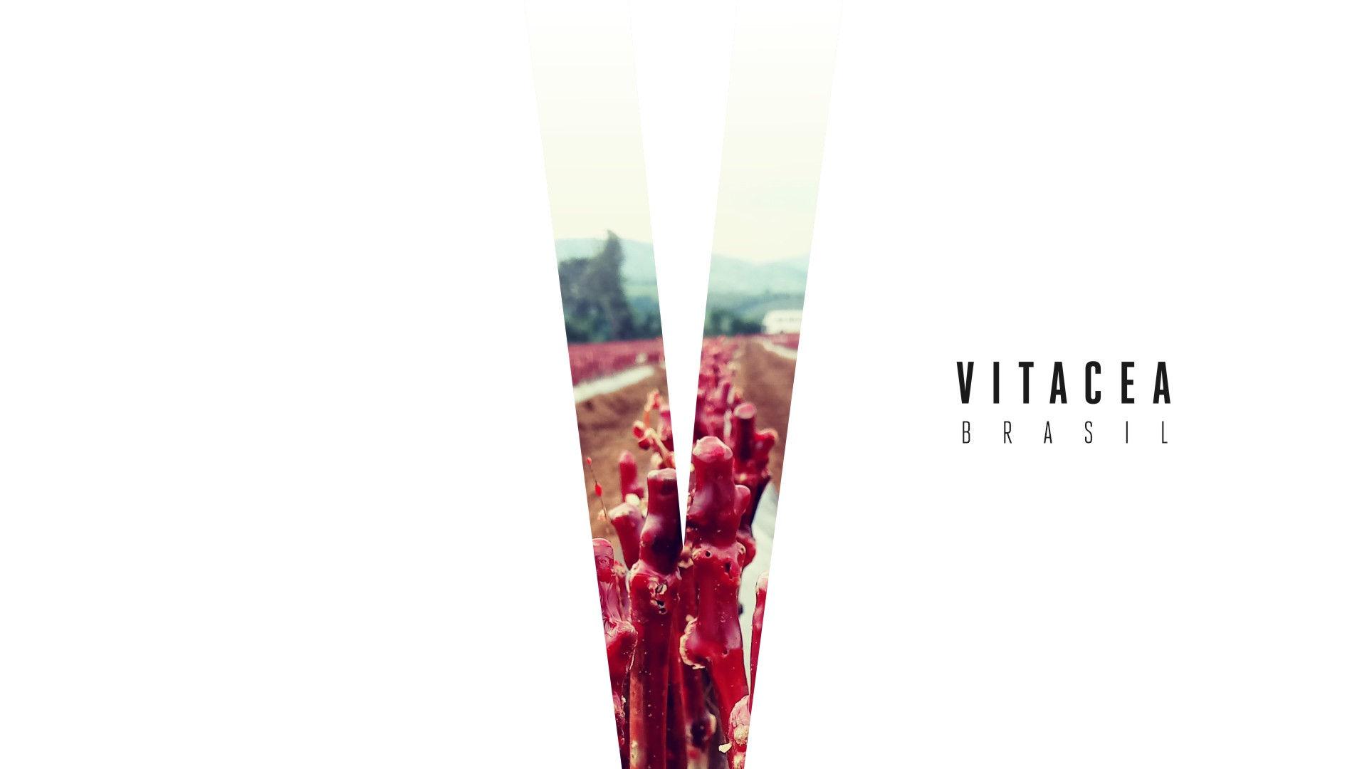 nathan-franco-vitacea-brasil-design-07.j
