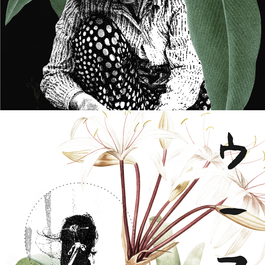 phytoessence - instagram 04.png