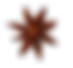 Star Anise 2.png