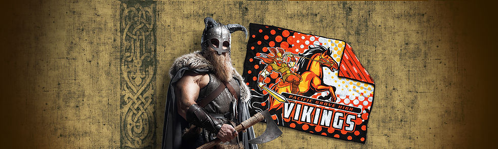 Top Banner Viking.jpg