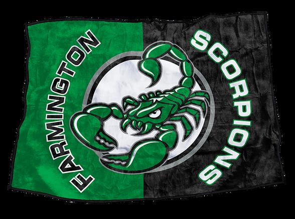 Farmington Scorpions.png