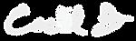 logo blanc avec.png