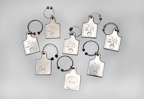 42-Sobriety Chips Wine Charms