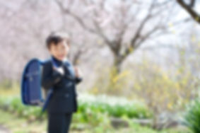 桜フォト_126.jpg
