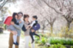 桜フォト_21.jpg