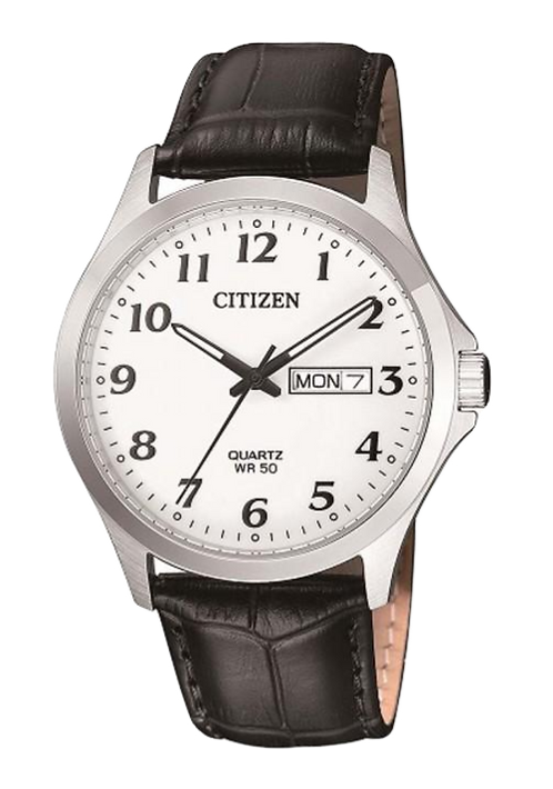 Citizen BF5000-01A Silver/Black/White