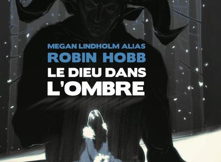 Le Dieu dans l'Ombre, Megan Lindholm (Robin Hobb)