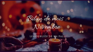 Bilan du mois de Novembre