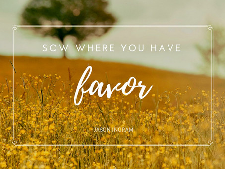 Sow Where You Have Favor