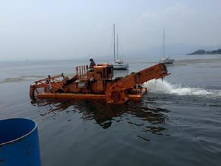 藻刈り船頑張ってくれて綺麗になりました♪♪