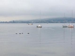 おだやかな琵琶湖です✨