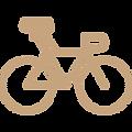 bike 1.png