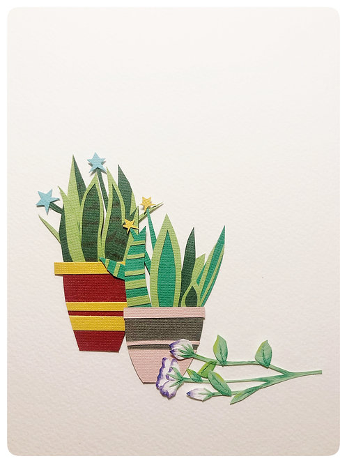 Cycad, Aloe y Flor de Eustoma.