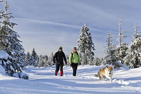 espe_camminare neve.jpg