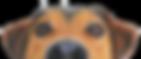 dog-001.png