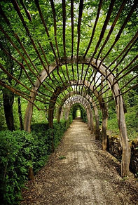 32-Les-jardins-de-Marqueyssac.jpg