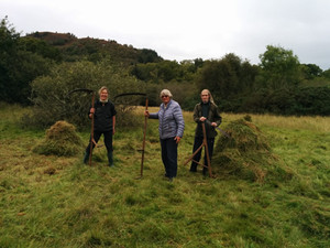 Scything Glenan Meadow