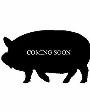 pig%2520coming%2520soon_edited_edited.jp