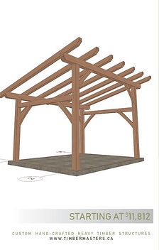 12x16ShedRoof.jpg