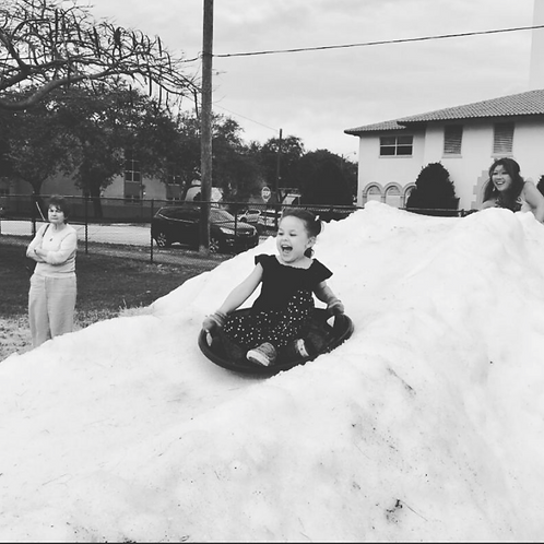 5 Ton Real Snow Party