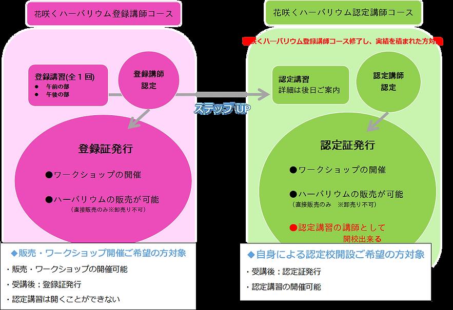 認定講習カリキュラム図画像(改).png