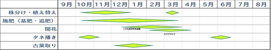 クリスマスローズ栽培歴.png