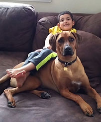 Savanna Ridgebacks