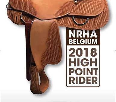 Standings Highpoint Rider Saddle