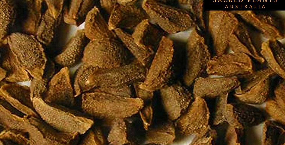 Syrian Rue 500 Seeds   Peganum harmala