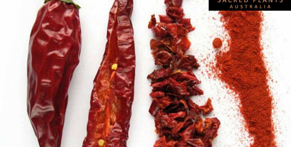 Paprika Chili Pepper 25 Seeds   Capsicum annuum