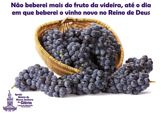 Não beberei mais do fruto da videira, até o dia em que beberei o vinho novo no Reino de Deus