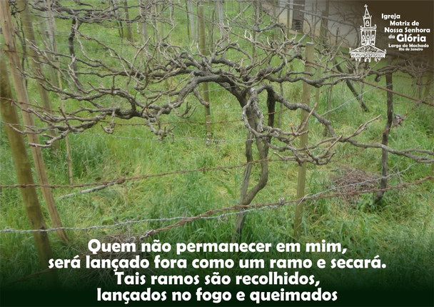 Quem não permanecer em mim, será lançado fora como um ramo e secará. Tais ramos são recolhidos, lanç