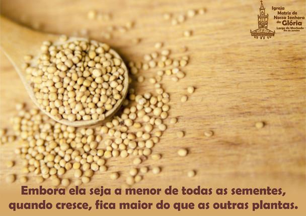 Embora ela seja a menor de todas as sementes, quando cresce, fica maior do que as oitras plantas