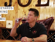 JOLO Vineyards Wine Making Through a Pandemic