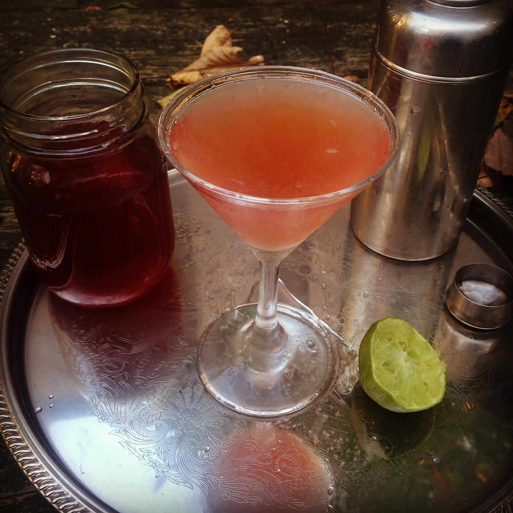 monkey weddings & summer sapphires sumac martini