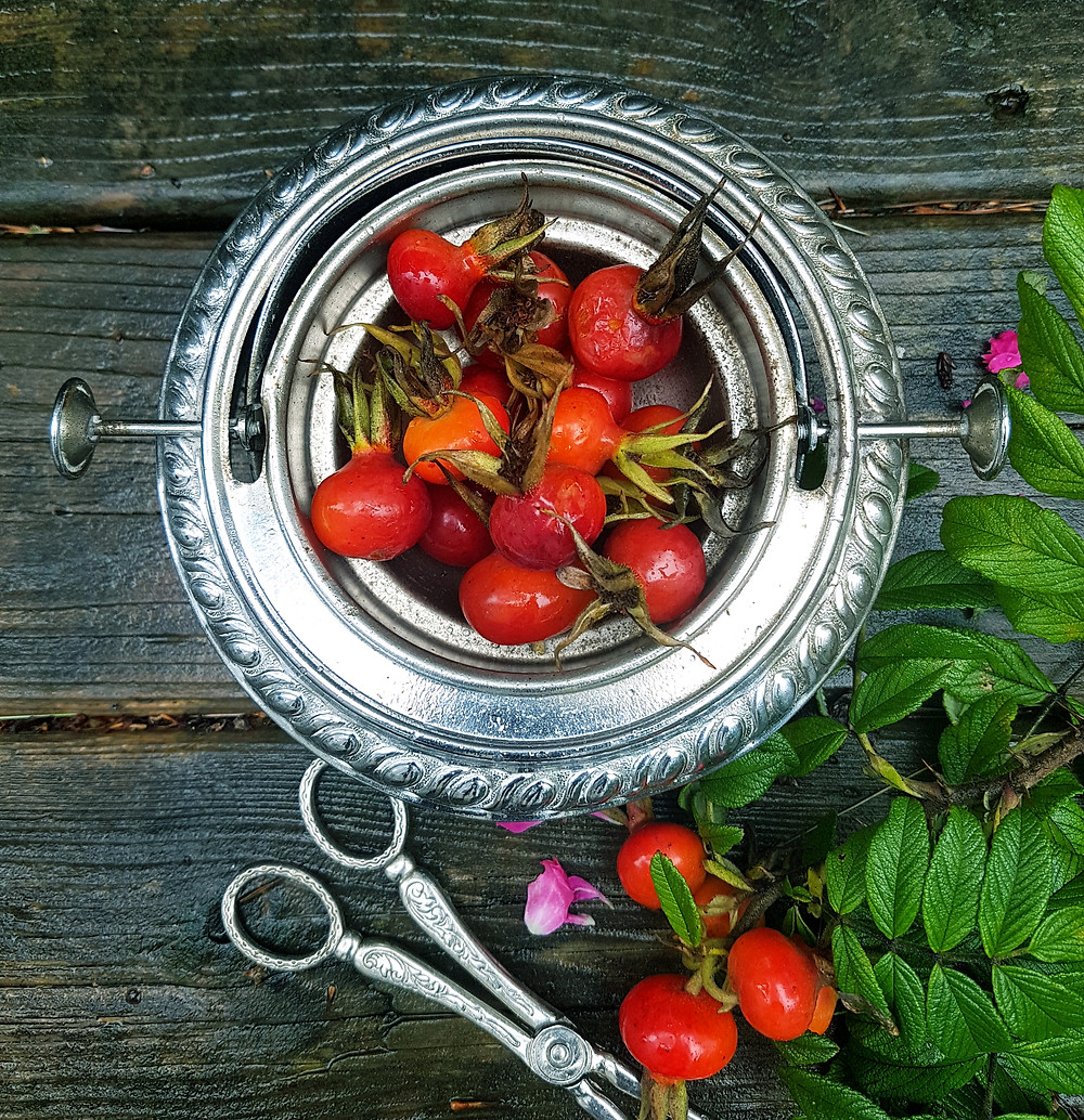 foraged rosehips by colleen Thompson