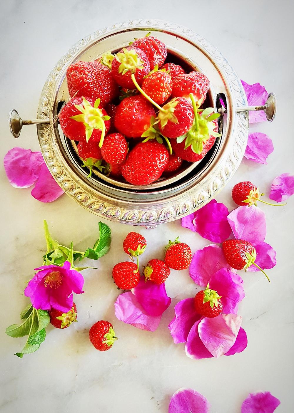 Colleen Thompson Wild Nova Scotia Rose Petals