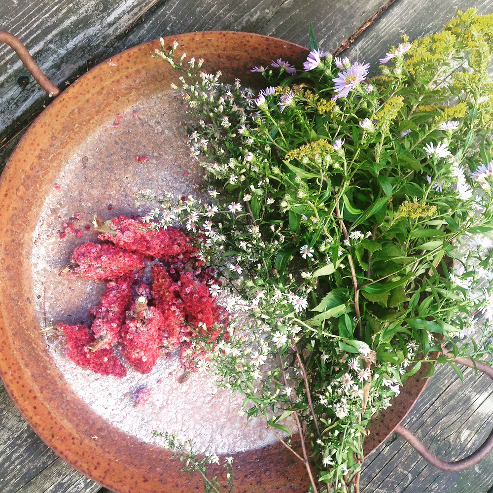 monkey weddings & summer sapphires sumac picking