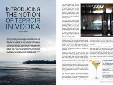 Introducing the Notion of Terroir in Vodka