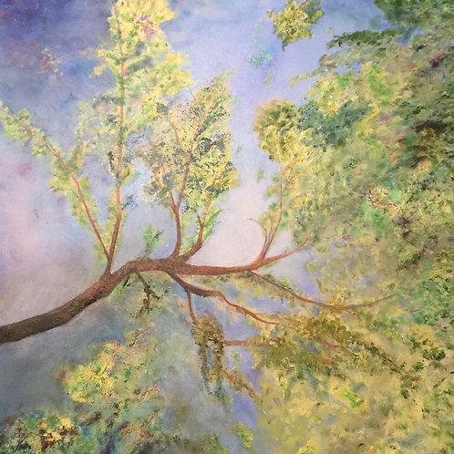 The Branches Speak