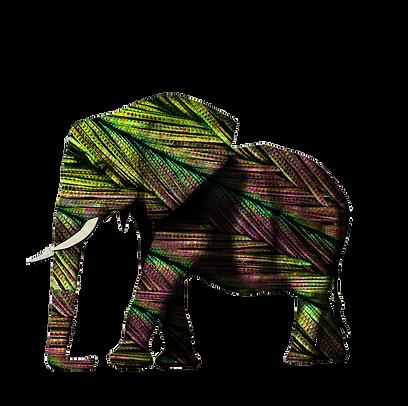 elephantplume.png